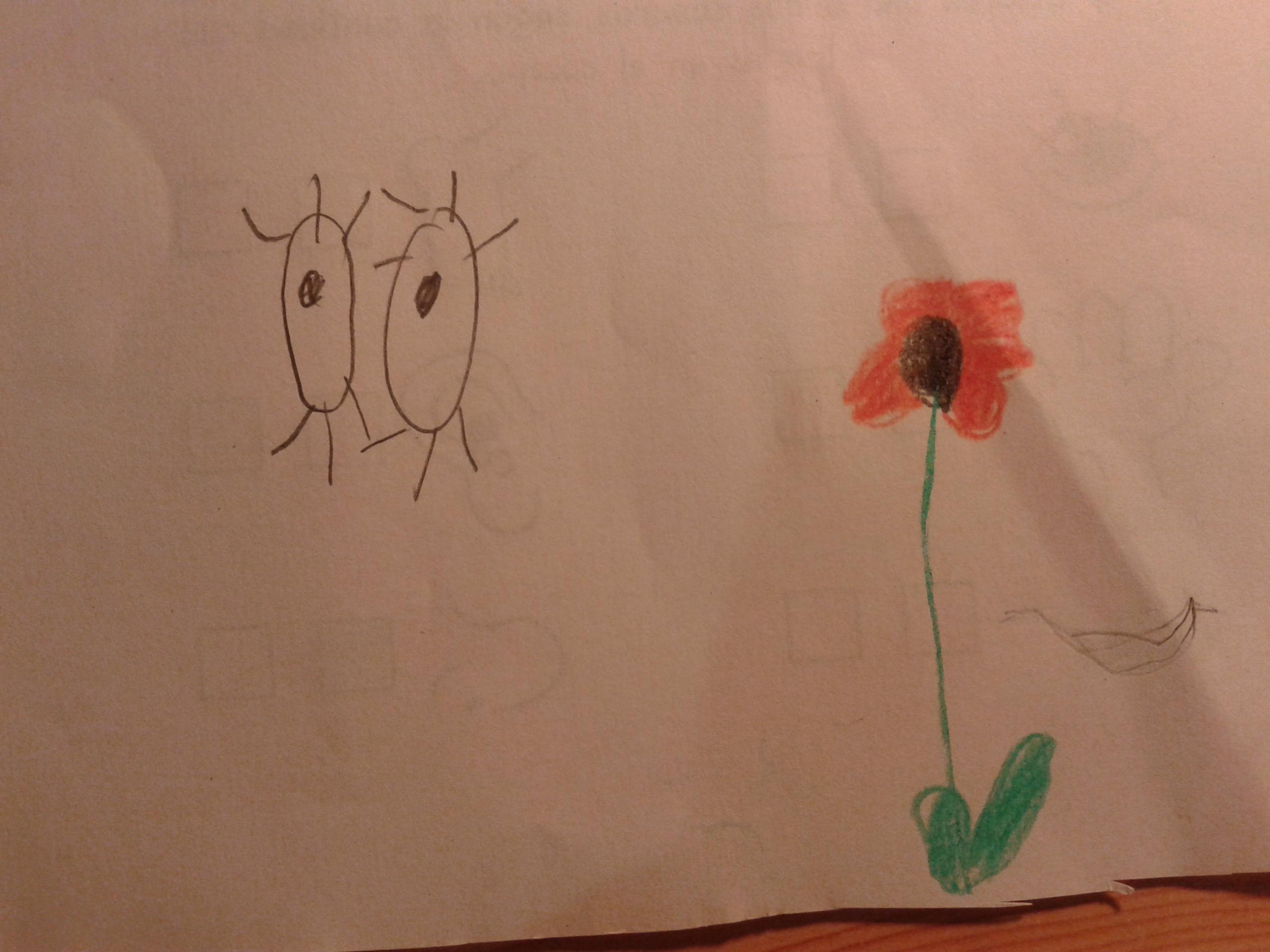 Conocimiento y dibujos para Infantil en el Lorenzo Luzuriaga
